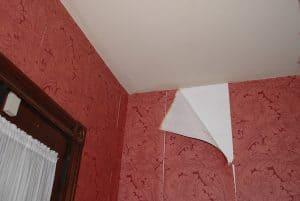 C mo quitar el papel de pared con efectividad - Quitar papel pared ...