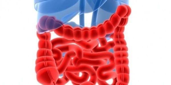 Síntomas comunes relacionados con la enfermedad de Crohn