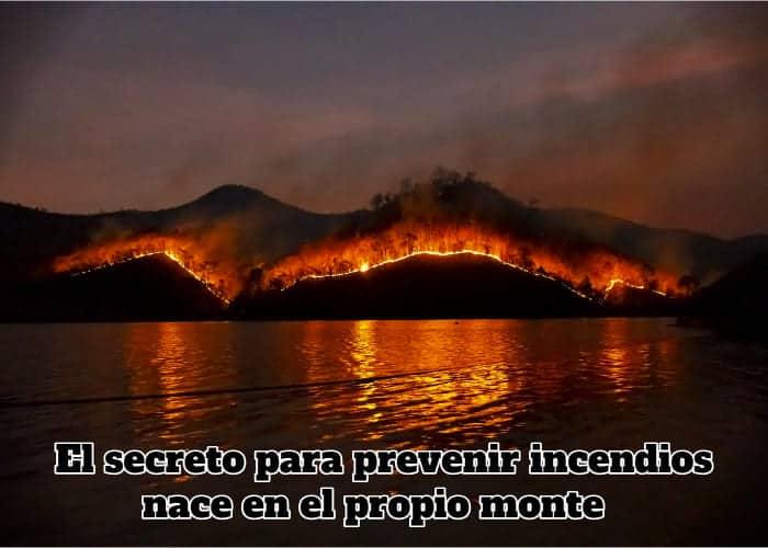 El secreto para prevenir incendios nace en el propio monte